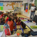 Animations pédagogiques