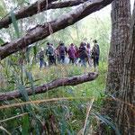 """1ère journée de rencontres, """"biodiversité"""", le 11 octobre"""