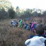 Visite terrain- la tourbière