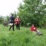 """Le groupe """"photo"""" entre en action sur les bords d'une prairie parsemée d'orchidées"""