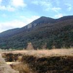 Tourbière de Pédestarrès, automne 2015