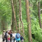 Le groupe a cheminé sur la voie verte reliant Salies à Escos sur une ancienne voie de chemin de fer