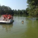 Les participants doivent effectuer un parcours d'observation et trouver des indices (flottants ou suspendus aux arbres)