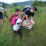 clément Grancher, entomologiqste aux commandes de la sortie, collecte les spécimens du jour avec les jeunes participants