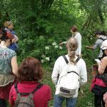 La  découverte et cueillette de plantes en compagnie de Bernadette Campagne, des Jardins de Nigelle (Tilh 40)