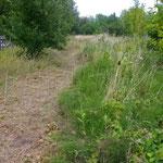 Im Sommer 2011 mussten wir das Gelände verlassen und die Katzen am Nachbargrundstück unterbringen. Der Zugangsweg ist nun viel weiter entfernt.