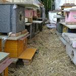 Das neue Zuhause ab März 2011 ähnelt einer Reihenhausanlage in Wien ...