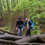 Sie bewältigten abenteuerliche Baumstammüberquerungen ...