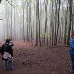 Nebulös-mysteriös - wo geht es denn zurück zur Saarbahnhaltestelle? Obwohl der Wald eine so erholsame Wirkung auf uns hatte, dass wir ihn gar nicht so schnell verlassen wollten ...