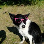 Nila steht die Brille auch gut *hihi*