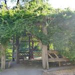 伐採した木で作られた素敵なベンチ