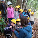 竹害について学ぶ