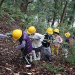 伐採した竹を運ぶ