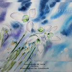 Snowdrops II 2018 (20) / 30x40cm Watercolour by ©janinaB.