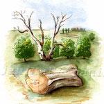 Landscape V 2008 (O1) / Watercolour 17x24cm ©janinaB.