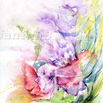 Flowers VI 2010 (9) / Watercolour 30x40cm / insp. Veronique Piaser-Moyen  © janinaB.