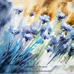 Cornflowers II 2018 (21) / 30x40cm Watercolour by ©janinaB.