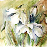 weisse Blumen (12) / Watercolour 30x40cm / insp. Fabio Cembranelli