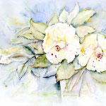 Blumen I 2009 (1) / Watercolour 30x40cm  © janinaB.