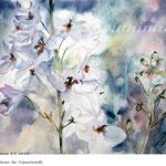 Delphinium VI 2018 / 30x40cm / (22) / Watercolour by ©janinaB.