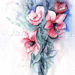 Amaryllis (8) / Watercolour 24x32cm  © janinaB.