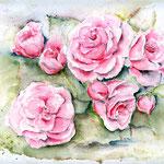 sechs-Rosen-(1) / Watercolour 24x32cm  © janinaB.
