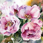 Rosen 2014 (18) / Watercolour 22x30cm