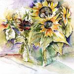 Hofmanns Sonnenbumen (14) / Watercolour 30x40cm  © janinaB.