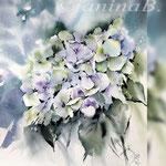 Hydrangea VI 2018 (21) / 30x40cm Watercolour by ©janinaB.