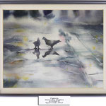 pigeons (O4) / Watercolour 20x30cm