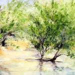 Landscape III 2011 (3) / Watercolour 24x34cm  ©janinaB.