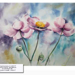 Anemones II 2017 / Watercolour 30x40cm on Arches CP © janinaB. 2017