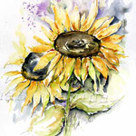 Sonnenblumen I 2010 (19) / Watercolour 30x40cm  © janinaB.