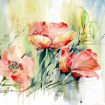 Mohn-I-2011-(1) / Watercolour 30x40cm