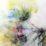 die Reste einer Blüte (9) / Watercolour 22x30cm
