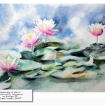 Waterlily II 2017 / Watercolour 30x40cm on Arches CP © janinaB. 2017