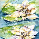 Seerosen I (5) / Watercolour 24x32cm  © janinaB.