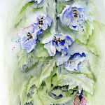 Flowers IX 2010 (O1) / Watercolour 18x25cm  © janinaB.