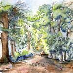 Wald (2) / Watercolour 30x40cm ©janinaB.