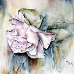 Rose II 2011 (T1) / Watercolour 42x56cm