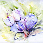 Flower-II-2010-(8) / Watercolour 24x32cm  © janinaB.