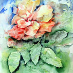 Flower II 2012 (8) / Watercolour 24x32cm