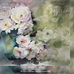 Roses XI 2018 (21) / 30x40cm Watercolour by ©janinaB.