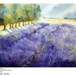 Lavendelfeld I (T3) / Aquarell 30,5x45,5cm auf Fabriano © janinaB. 2015