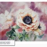 Anemones V 2017 (20) / Watercolour 30x40cm © janinaB. 2017