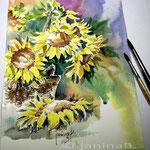 Sonnenblumen_02_2014 (20)  / Watercolour 22x30cm