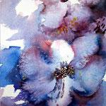 Bloom / Watercolour 23x15cm Arches GT © janinaB. 2016