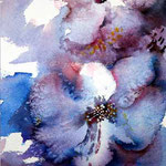 Bloom (O1)/ Watercolour 23x15cm Arches GT © janinaB. 2016