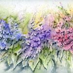 Blütenpracht (19) / Watercolour 24x32cm  © janinaB.