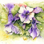 Flowers X 2010 (O2) / Watercolour 17x24cm  © janinaB.